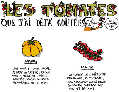 guillaume_long_tomates