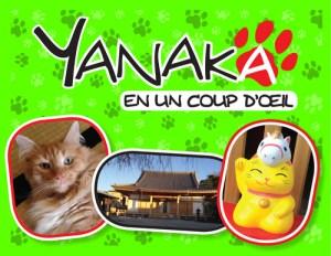 Yanaka-en-un-coup-d-oeil-cover