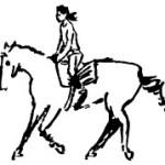 Farilya Farm Horse Riding Gundogan Turkey
