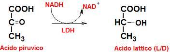 formula-acid-lattico
