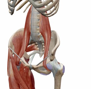 psoas, Psoas Syndrome and Low Back Pain