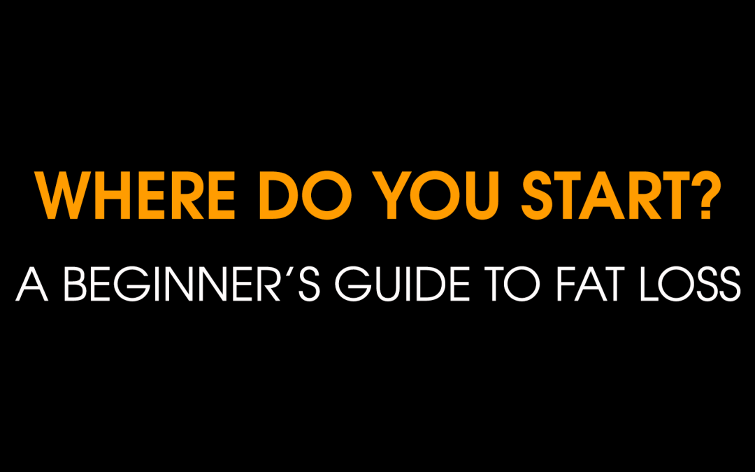 A BEGINNER'S GUIDE TO FAT LOSS