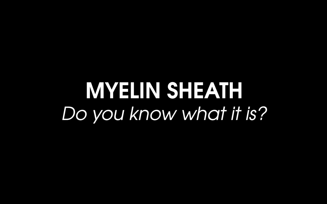 Myelin Sheath: Do you know what it is?