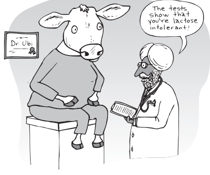 What's lactose? What's lactose intolerance?
