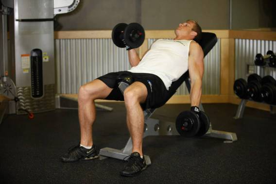 Image result for incline dumbbell curls