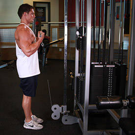 biceps-cable-curl-instruction-step-2