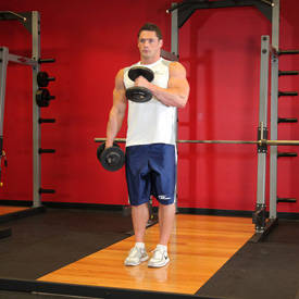 Image result for hammer curls