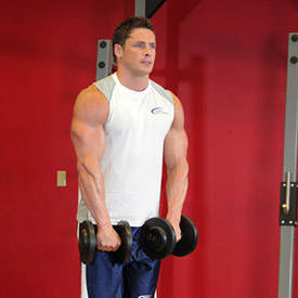 Elevar la parte delantera pesa de gimnasia