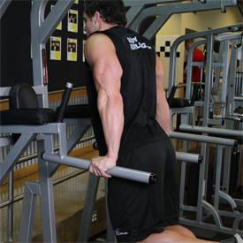 Dips - tríceps Versión