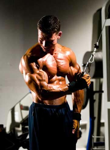 19 Inch Arms Part 1 Triceps