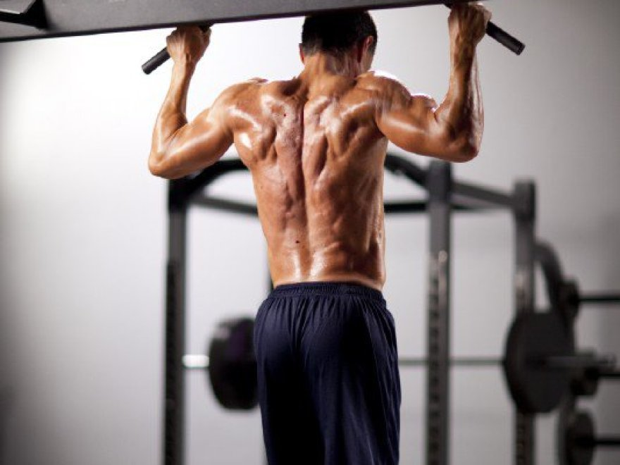 The Top 10 Reasons To Use Full Body Workouts