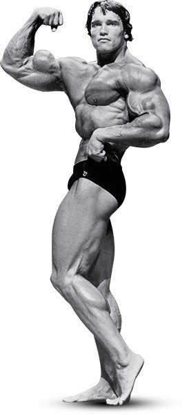 Arnold schwarzenegger the greatest bodybuilder of all time take arnold went heavy with presses and upright rows especially early in his workouts when his energy levels were highest multijoint movements like these are malvernweather Images