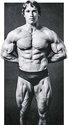 Arnold schwarzenegger the greatest bodybuilder of all time if youve ever done a grueling leg workoutlots of heavy sets of all the most challenging thigh movementsyou know it takes several days to recover malvernweather Choice Image