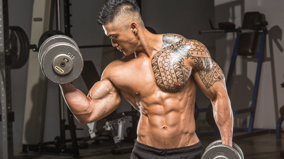 5 Arm Blasting Workouts A Beginners Guide
