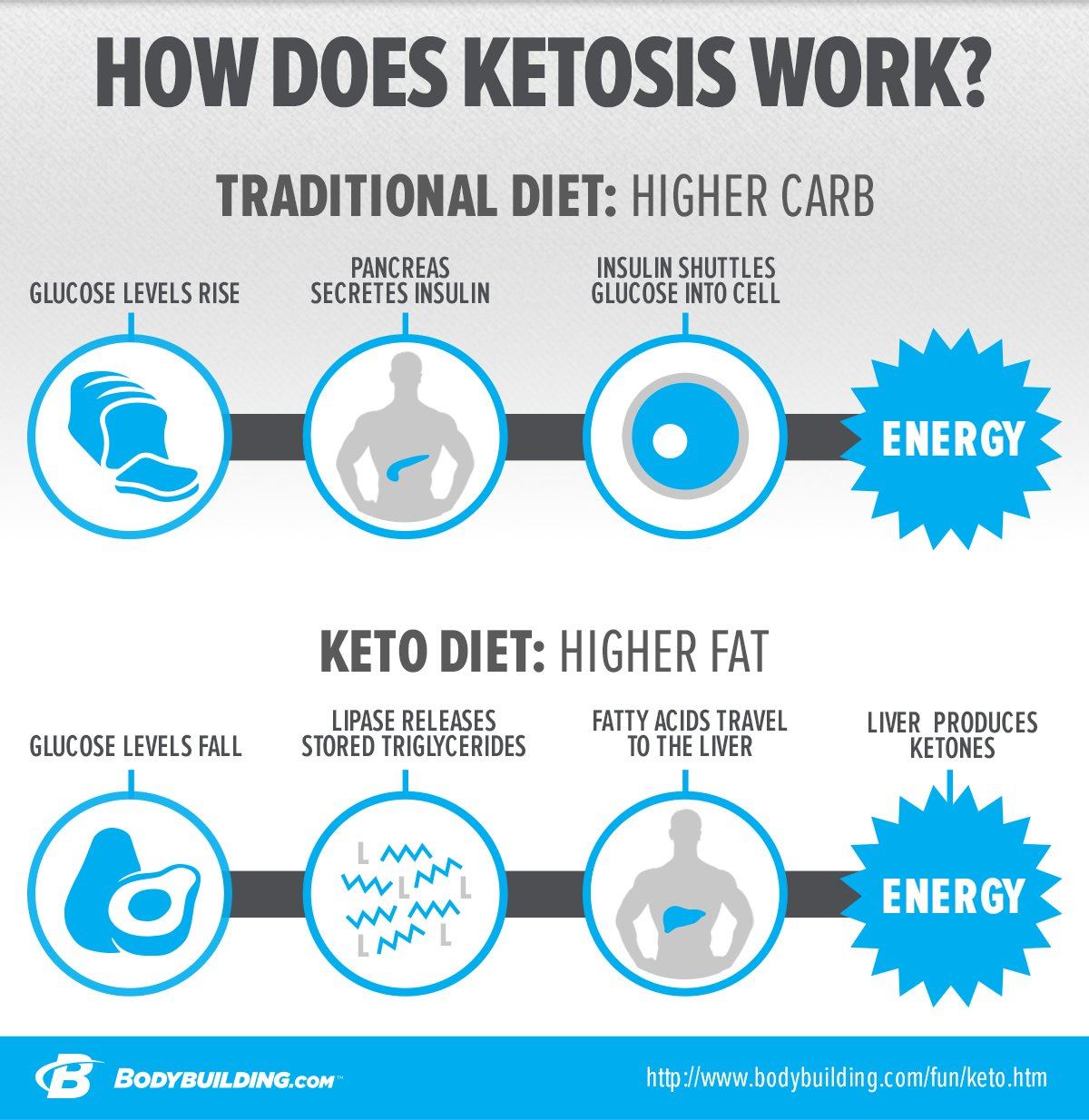 Image result for what is ketosis