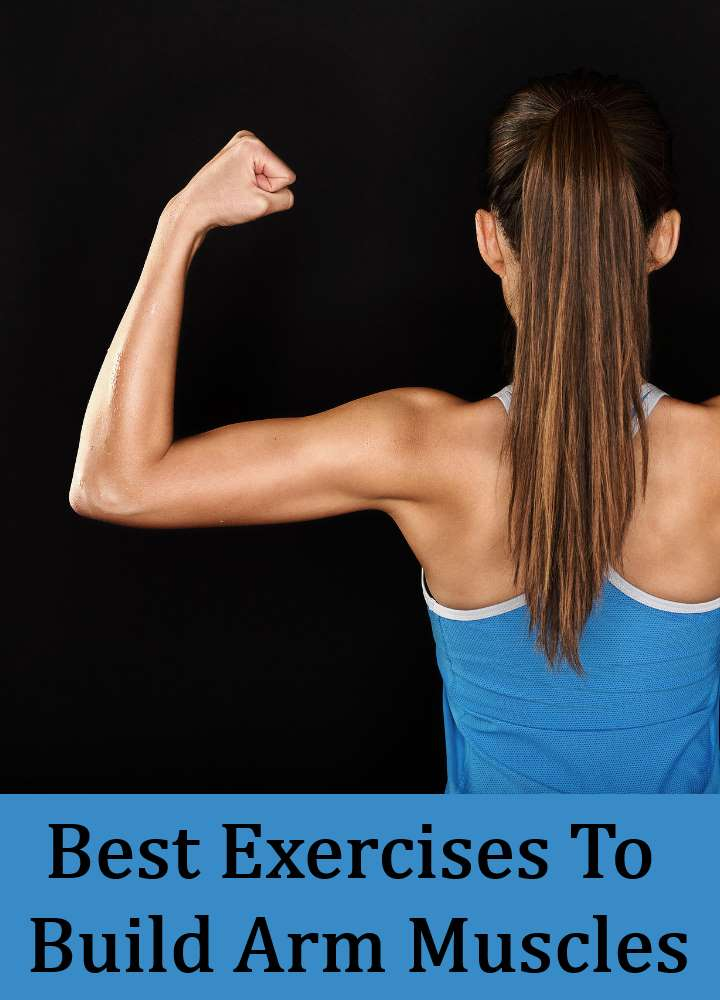 Best Exercises To Build Arm Muscles
