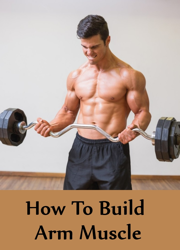 How To Build Arm Muscle