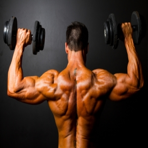 Dumbbell Curls 1