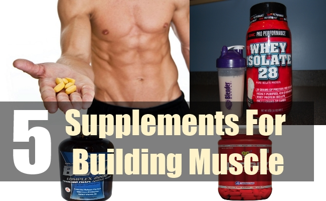 5 Best Supplements For Building Muscle