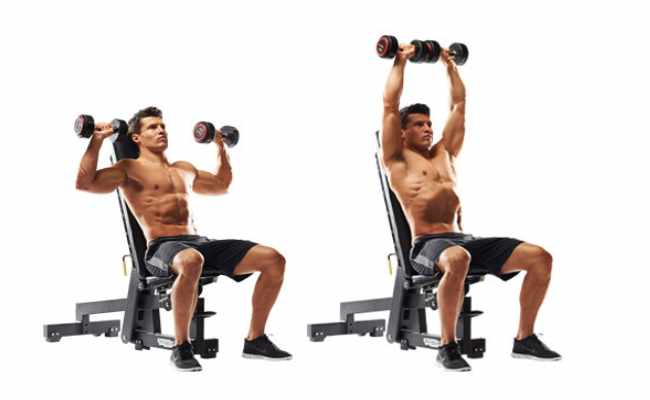 5 shoulder exercises with dumbbells various shoulder exercises seated dumbbell press publicscrutiny Gallery