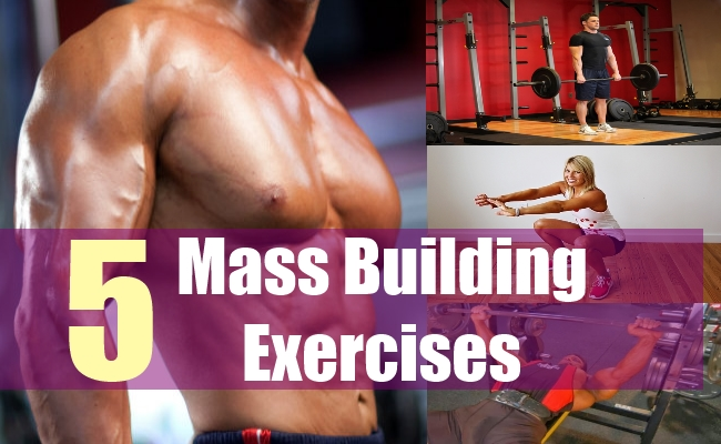 5 Mass Building Exercises