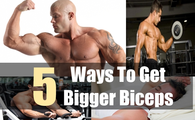 5 Ways To Get Bigger Biceps
