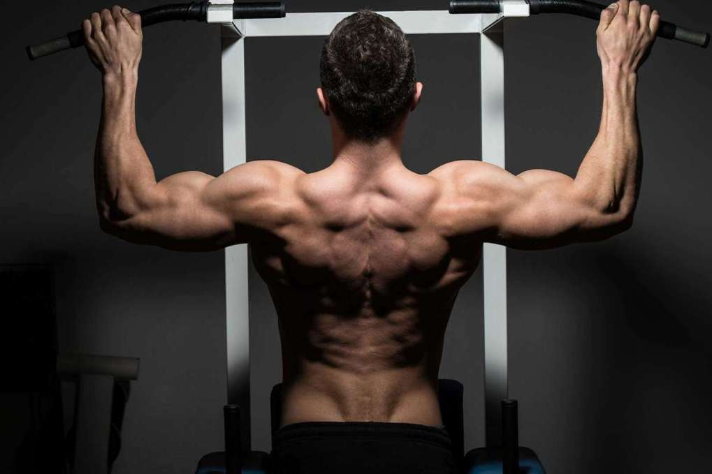 5 Dislocated Shoulder Exercises - Exercises For A -8799