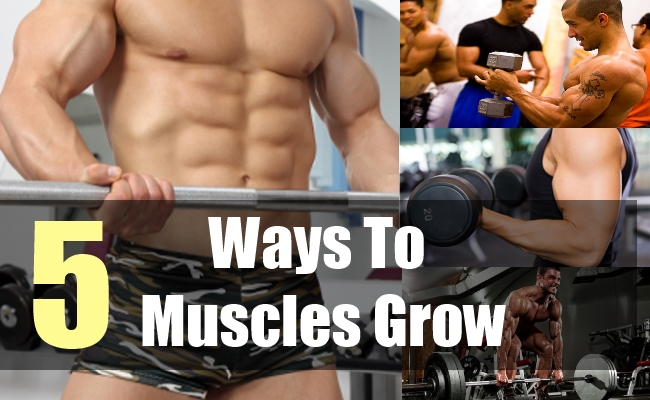 5 Ways To Muscles Grow