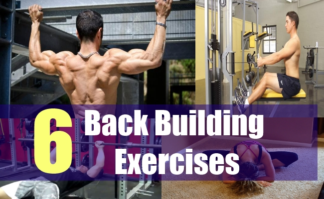 6 Back Building Exercises
