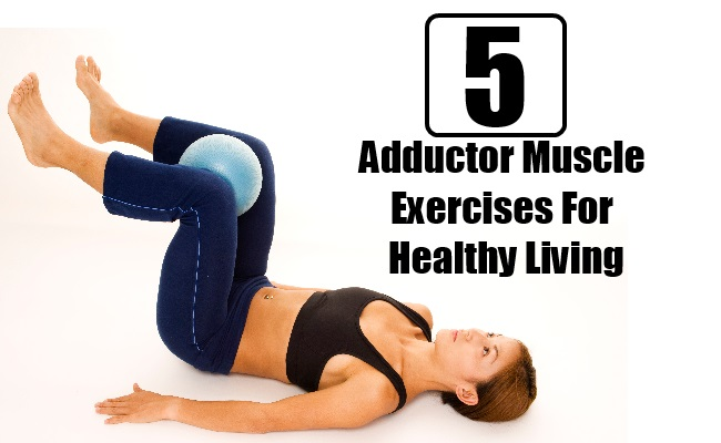 Adductor Muscle Exercises For Healthy Living