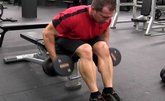 Dumbbell Seated Row