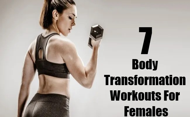 Body Transformation Workouts For Females
