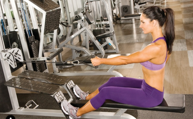 Seated Row Exercises
