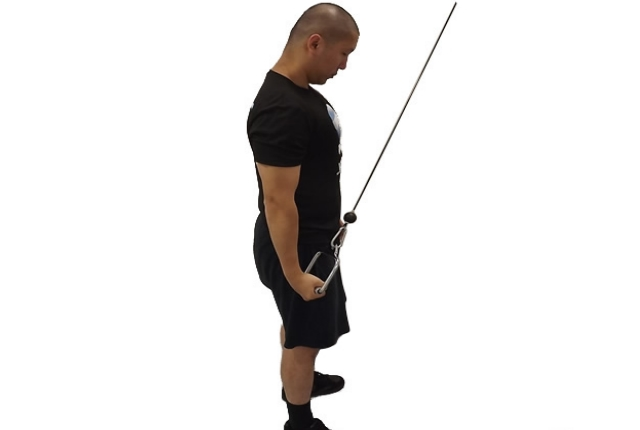 Reverse One-Arm Cable Triceps Extensions