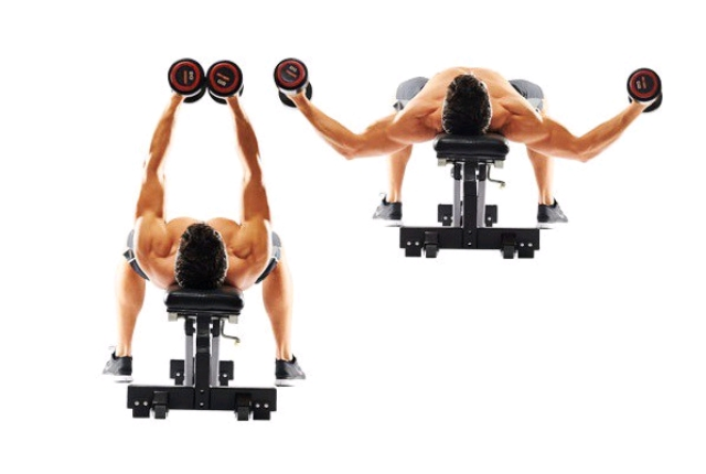 You Must Include Chest Flies In Your Workout Routine If Are Considering Building A Rock Solid And Marvelous Very Short Time Span
