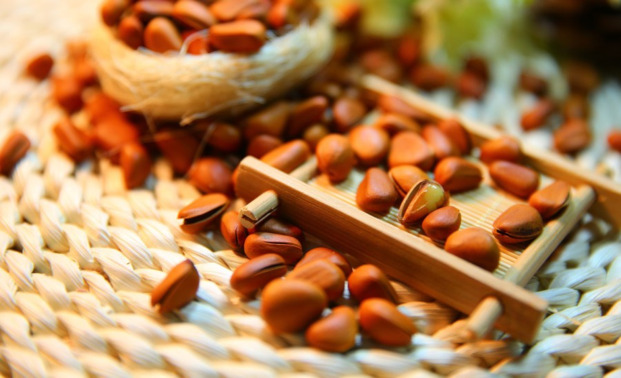 Snack on nuts for a protein diet