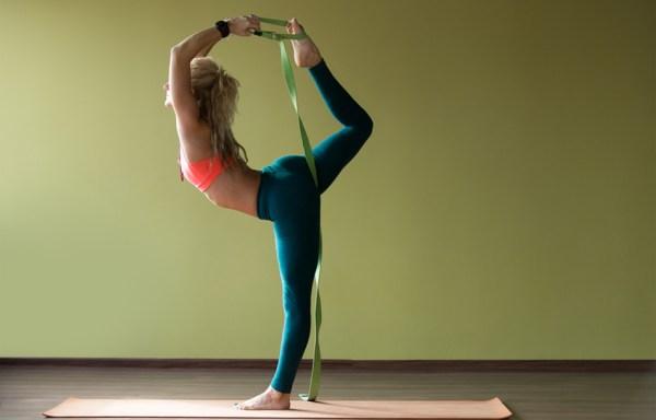 iyengar yoga style