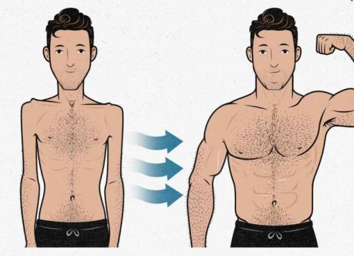 How To Build Muscles Fast For Skinny Guys