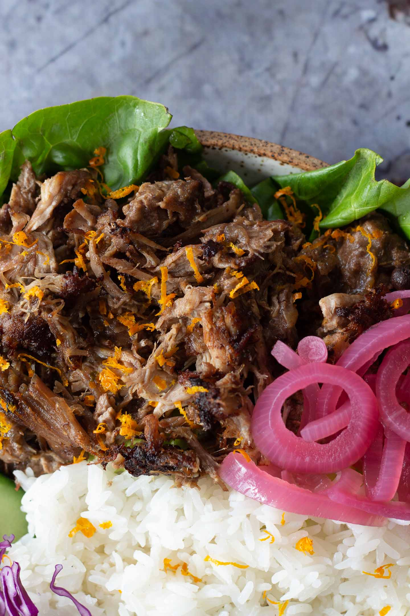 Crispy Carnitas close up with pickled red onion and white rice