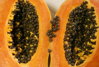 papaya gezond | papaya | papaya bladeren | papaya fruit | papaya zaad