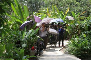 Fotografen im Botanischen Garten Guangzhou
