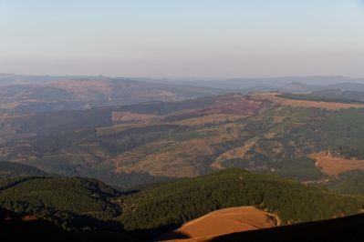 Nutzwälder