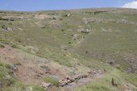 Versteinerter Wald bei Sigri