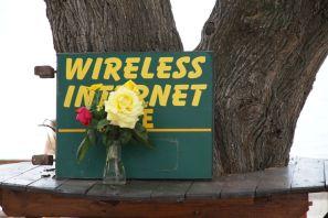 Blühendes Internet