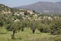Ort Mathikoloni