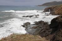 Küste bei Pachyammos