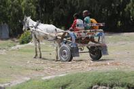 Pferdetaxi