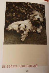 boek Dasja oftewel het leven van een pup Karel Capek