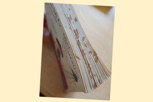 boek pluk van de petteflet