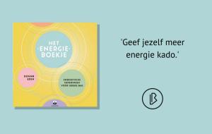 Recensie: Donna Eden & Dondi Dahlin - Het energieboekje